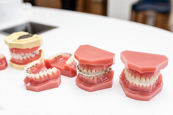 歯科医師、それも矯正治療を専門とする歯科医師を目指されたきっかけは?